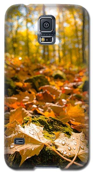 Galaxy S5 Case featuring the photograph Glistening Autumn Dew by Mark David Zahn