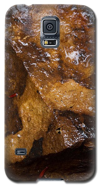 Galaxy S5 Case featuring the photograph Glistening Stone by Haren Images- Kriss Haren
