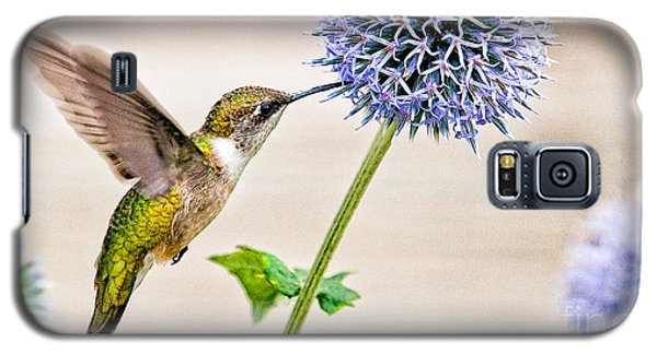 Globe Thistle Hummer Galaxy S5 Case