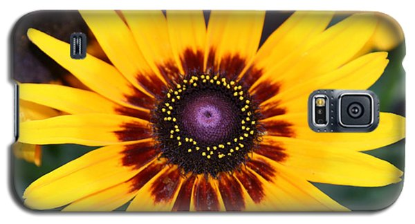 Galaxy S5 Case featuring the photograph Gloriosa Daisy by Denyse Duhaime