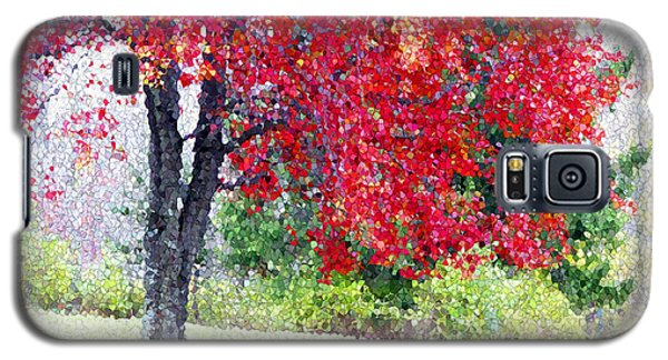 Galaxy S5 Case featuring the photograph Glorious Autumn by Mariarosa Rockefeller