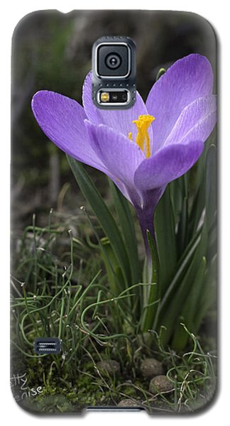 Galaxy S5 Case featuring the photograph Glorious Crocus by Betty Denise