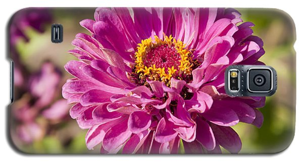 Glorious Flower Galaxy S5 Case