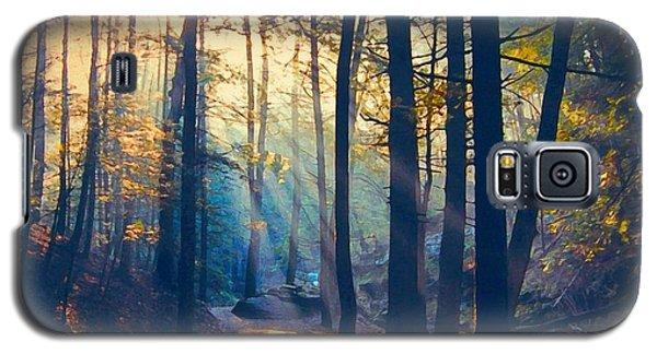 Glorious Forest Morning Galaxy S5 Case