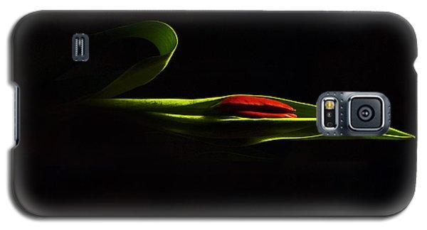 Glorious Light Galaxy S5 Case