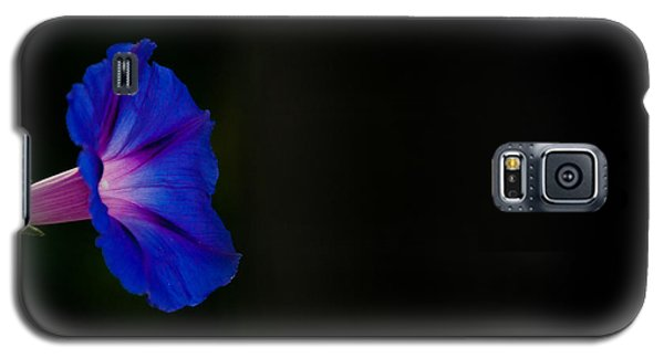 Glorious Simplicity Galaxy S5 Case by Cheryl Baxter