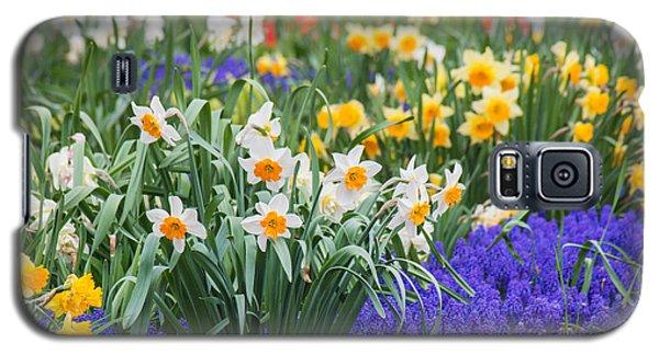 Glorious Spring Galaxy S5 Case