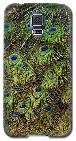 Glory Be  Galaxy S5 Case