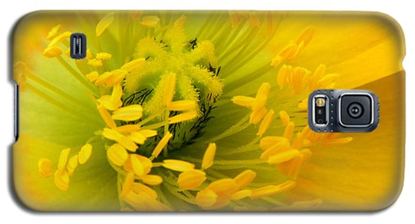 Galaxy S5 Case featuring the photograph Glory Of Nature by Deb Halloran