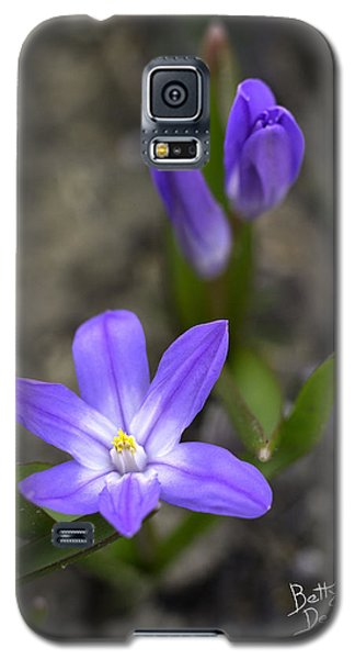 Galaxy S5 Case featuring the photograph Glory Of The Snow by Betty Denise