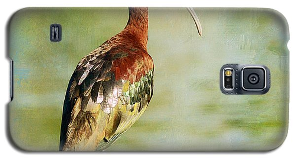 Glossy Ibis Galaxy S5 Case