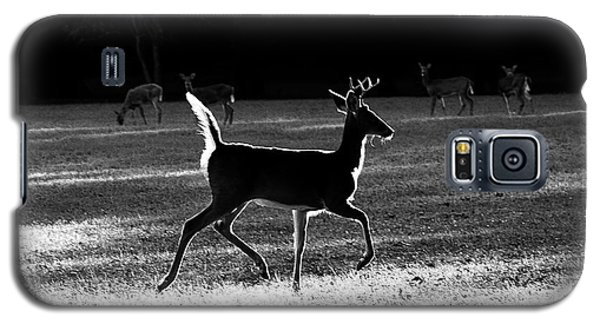 Galaxy S5 Case featuring the photograph Glowing Buck by Lorna Rogers Photography