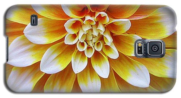 Glowing Dahlia Galaxy S5 Case