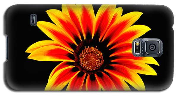 Galaxy S5 Case featuring the photograph Glowing Flower by Marwan Khoury