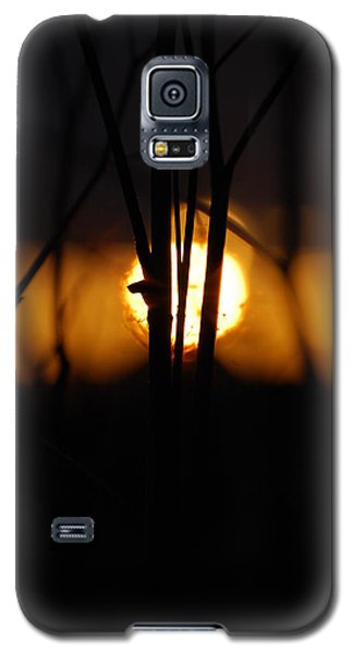 Galaxy S5 Case featuring the photograph Glowing Lace by Jani Freimann