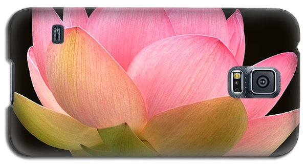 Glowing Lotus Square Frame Galaxy S5 Case by Byron Varvarigos