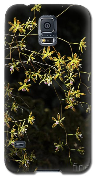 Glowing Orchids Galaxy S5 Case