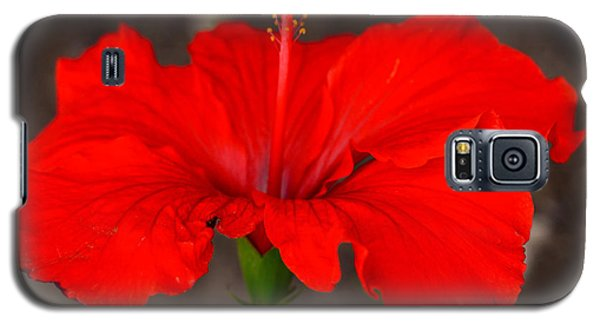 Glowing Red Hibiscus Galaxy S5 Case