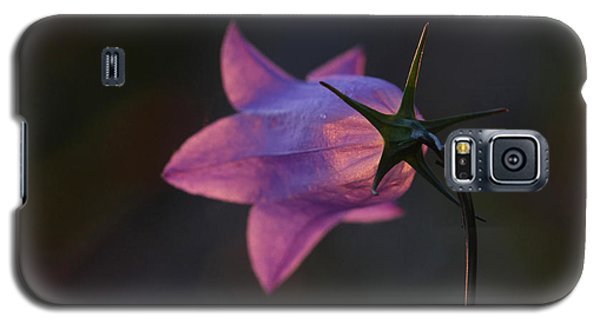 Glowing Sunset Flower Galaxy S5 Case