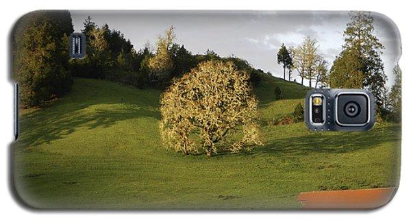 Glowing Tree Moss Galaxy S5 Case