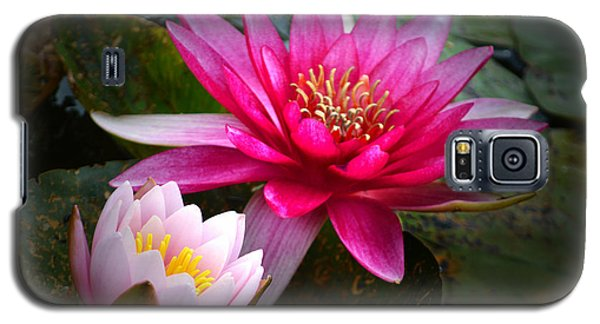 Glowing Water Lilies. Galaxy S5 Case by Terence Davis