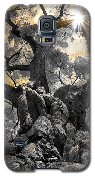 Gnarled Maple Galaxy S5 Case