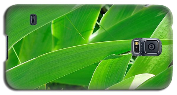 Galaxy S5 Case featuring the photograph Go Green 2 by Chad and Stacey Hall