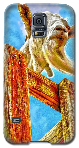 Goat Up High Galaxy S5 Case by Annie Zeno