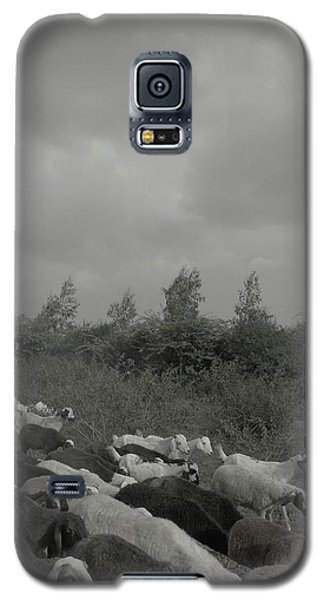 Goatherd's Delight Galaxy S5 Case
