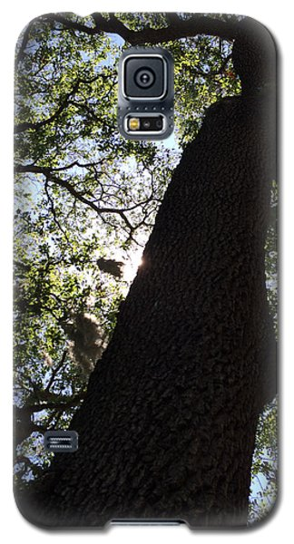 Goddess Tree Galaxy S5 Case
