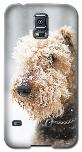 Dog's Portrait Under The Snow Galaxy S5 Case