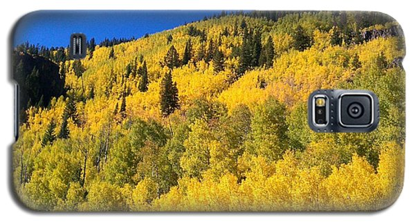 Galaxy S5 Case featuring the photograph Going Gold by Fortunate Findings Shirley Dickerson