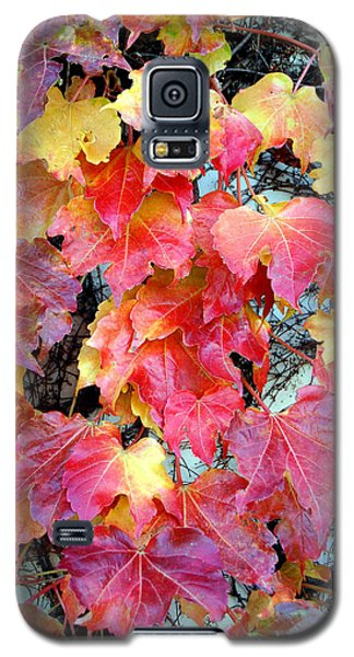 Going Out In Glory Galaxy S5 Case