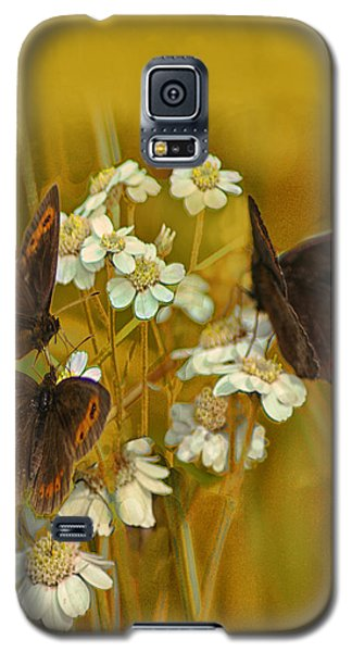 Galaxy S5 Case featuring the photograph Gold And Brown by Jacqi Elmslie