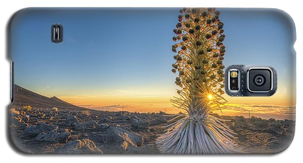 Galaxy S5 Case featuring the photograph Gold And Silver by Hawaii  Fine Art Photography