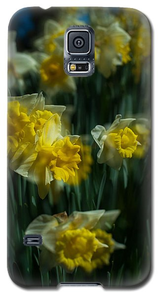 Gold Daffodil Galaxy S5 Case by Catherine Lau