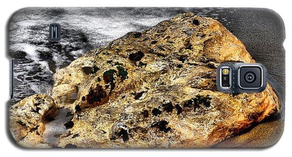 Gold Flecks Galaxy S5 Case by Bob Wall