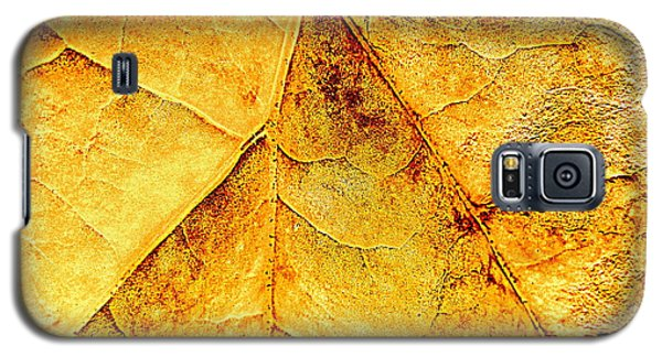 Galaxy S5 Case featuring the photograph Gold Leaf by Kathy Bassett