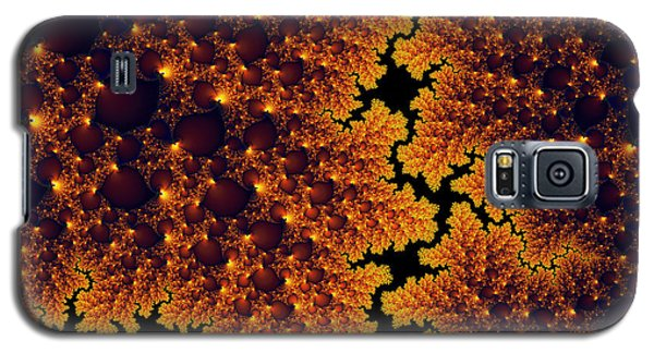 Golden And Black Fractal Universe Galaxy S5 Case by Matthias Hauser
