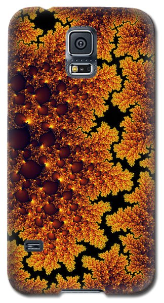 Golden And Black Fractal Universe Galaxy S5 Case