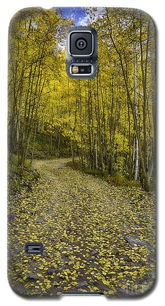 Golden Aspen Road Galaxy S5 Case
