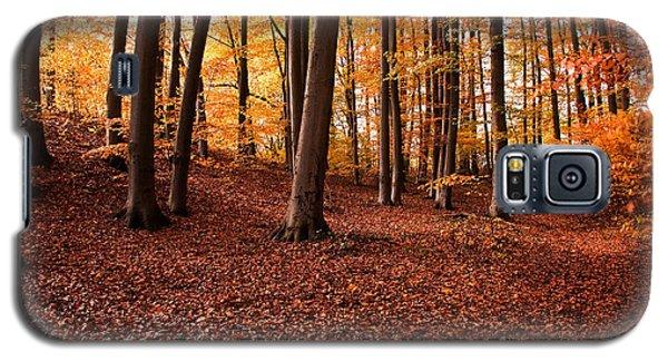 Golden Autumn Galaxy S5 Case