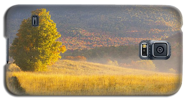 Golden Autumn Morning Galaxy S5 Case