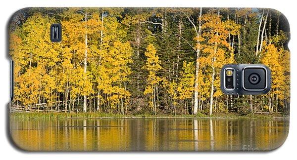 Golden Autumn Pond Galaxy S5 Case