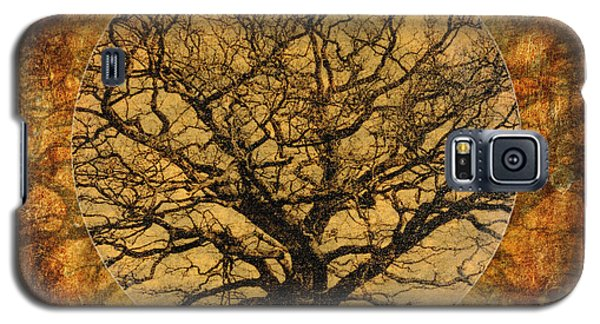 Golden Autumnal Trees Galaxy S5 Case