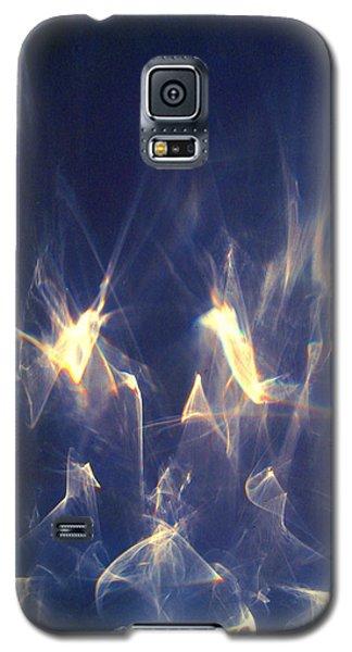 Galaxy S5 Case featuring the photograph Golden Birds by Leena Pekkalainen