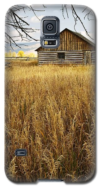 Golden Cabin Galaxy S5 Case by Sonya Lang