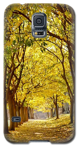 Golden Canopy Galaxy S5 Case