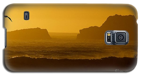 Golden Coast Galaxy S5 Case