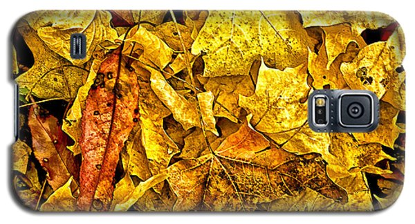 Golden Colors Of Fall Galaxy S5 Case